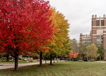 Marquette Raynor Library in Fall