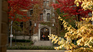 From a distance, a woman walks into the front doors of Marquette Hall. In the foreground autum leaves frame the picture.