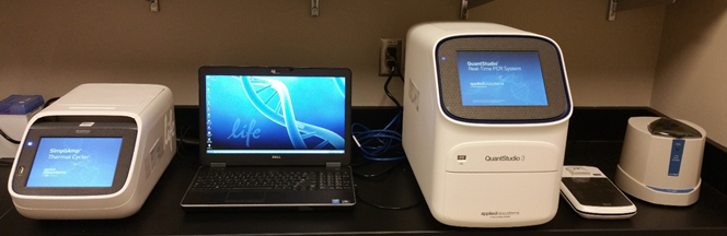 QuantStudio 3 Real-Time PCR System, Qubit 3.0 Fluorometer, SimpliAmp Thermal Cycler