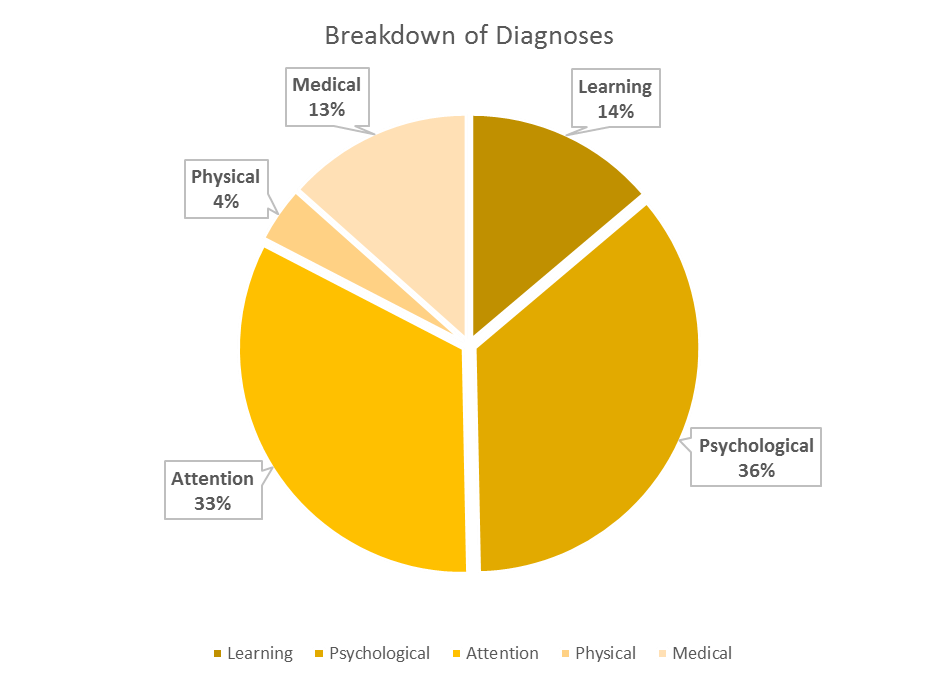 Breakdown of Diagnoses is 36% psychological, 33% attention, 14% learning, 13% medical and 4% physical