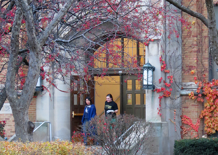 Schroeder Complex in the Fall