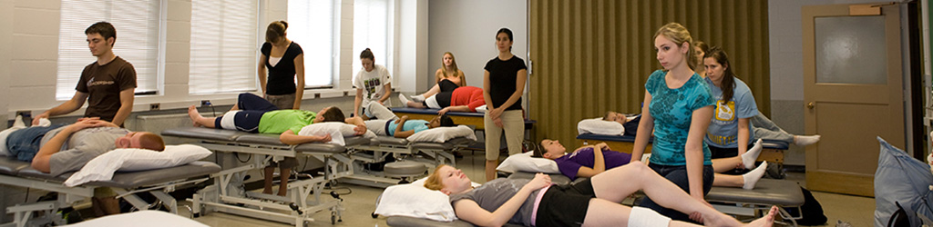 Physical Therapy what to major in