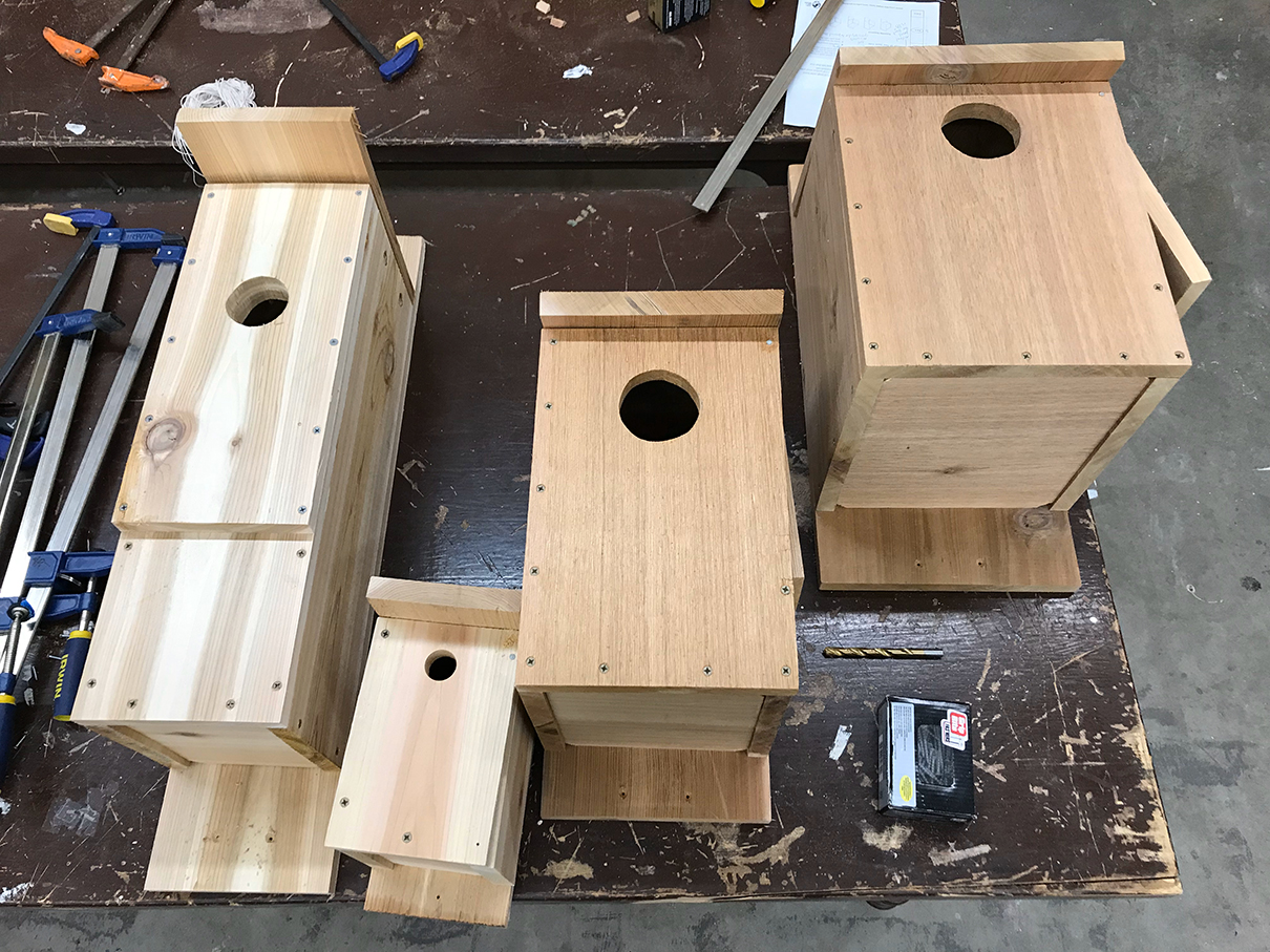 Unpainted Bird, Bat, and Owl Houses