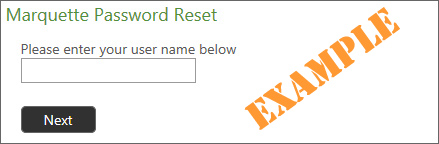 Marquette Password Reset Example #1