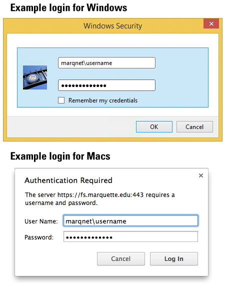 Example logins