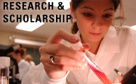 Research and Scholarship at MU