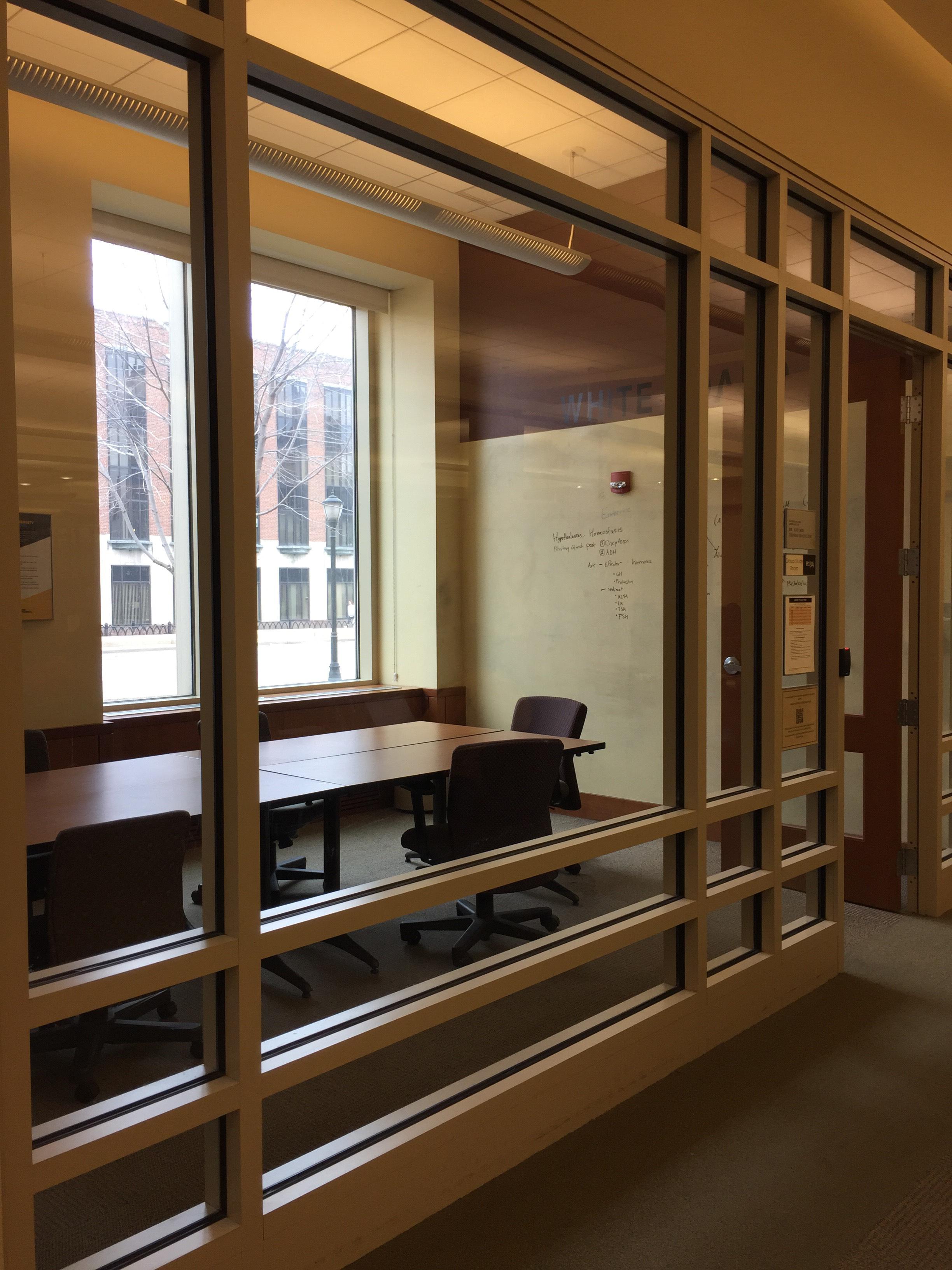 Raynor Library Study Room