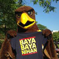 Golden Eagle with BSO shirt