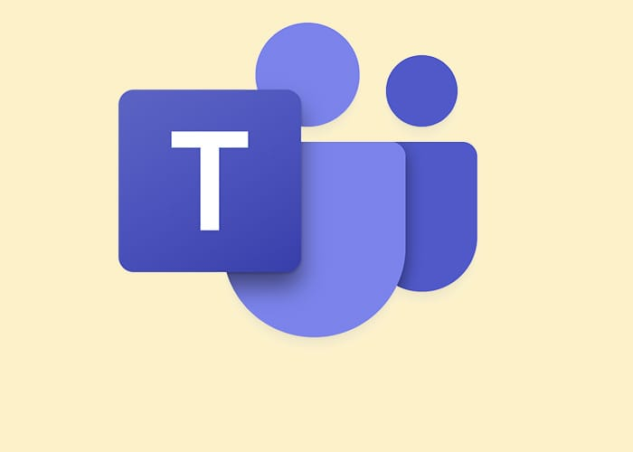 Microsoft Teams software icon