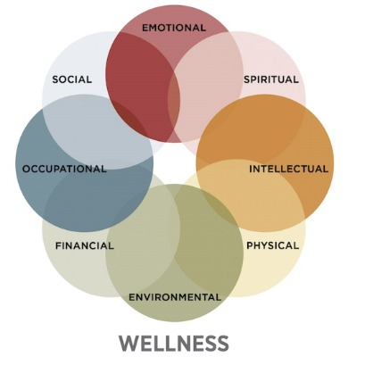 dimensions of wellness graph